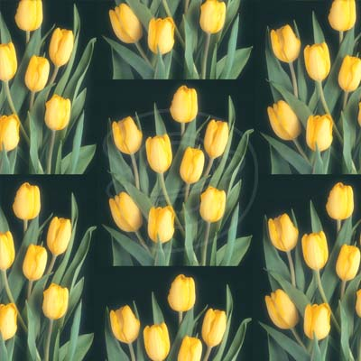 Wholesale Gift Wrap or Wrapping Paper Gift Wrapping Paper Cheap